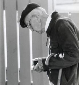 René Pomerleau identifiant un champignon